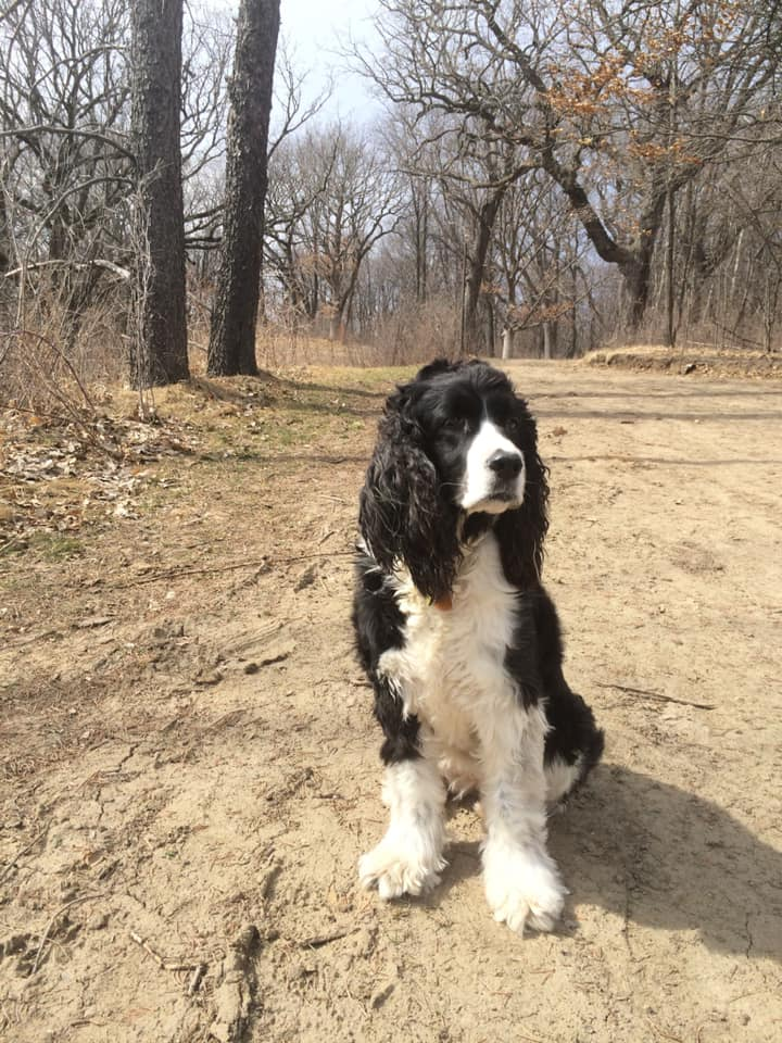 Bella Regal on Trail