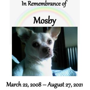 mosby